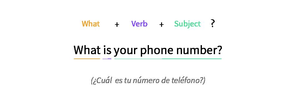 Imagen ejemplo de cómo usar What.